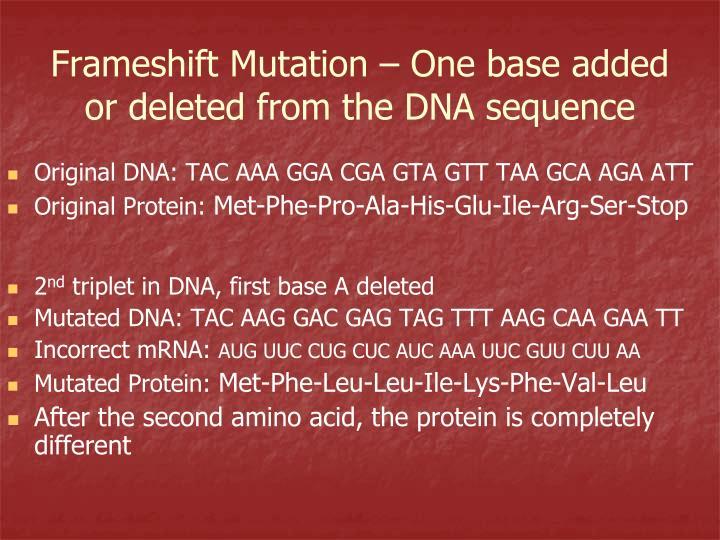 Original DNA: TAC AAA GGA CGA GTA GTT TAA GCA AGA ATT