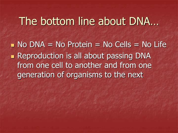 The bottom line about DNA…