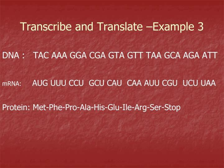 DNA :   TAC AAA GGA CGA GTA GTT TAA GCA AGA ATT