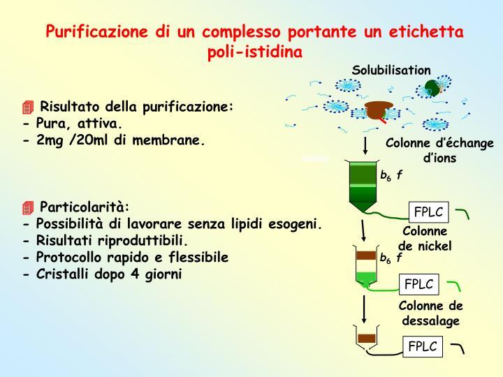 Purificazione di un complesso portante un etichetta poli-istidina