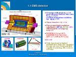 1 1 cms detector