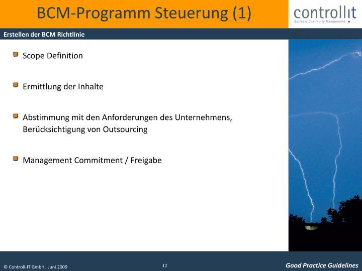 BCM-Programm Steuerung (1)