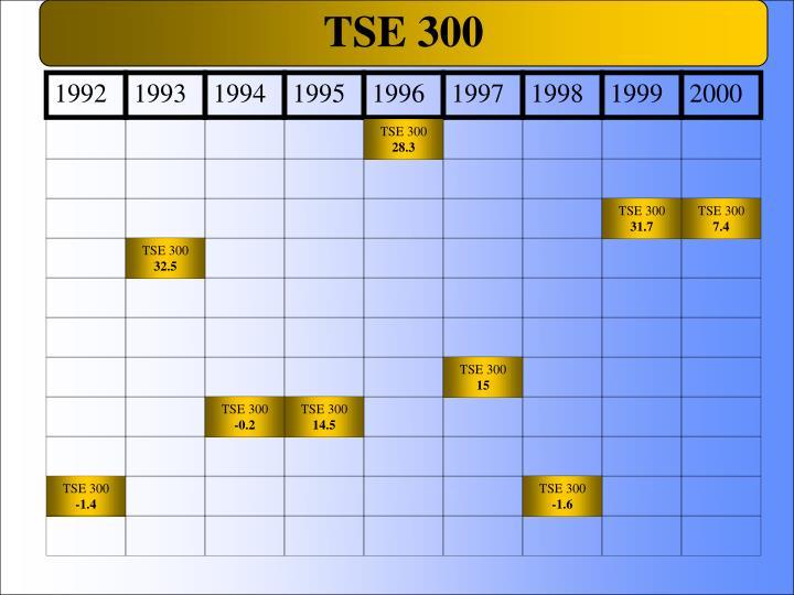 TSE 300
