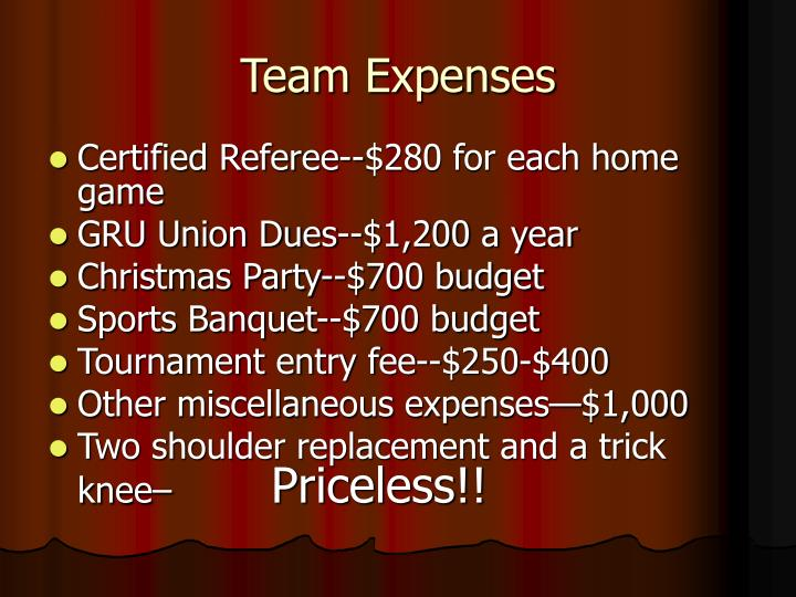 Team Expenses