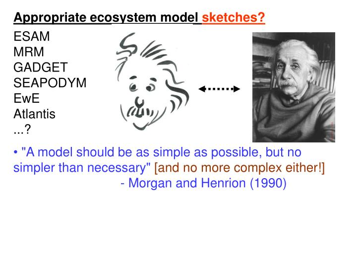 Appropriate ecosystem model