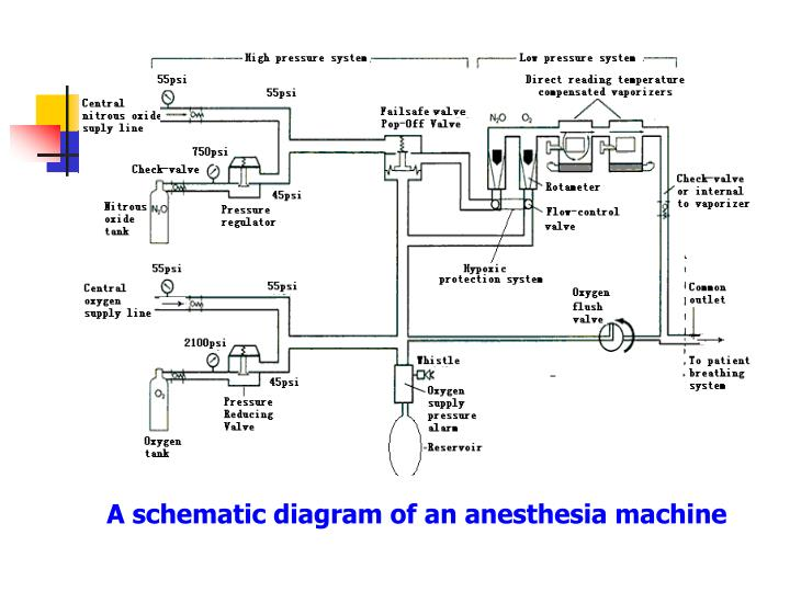 A schematic diagram of an anesthesia machine