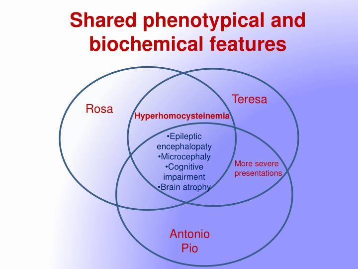 Shared phenotypical and biochemical features