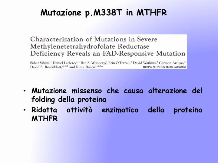 Mutazione p.M338T in MTHFR