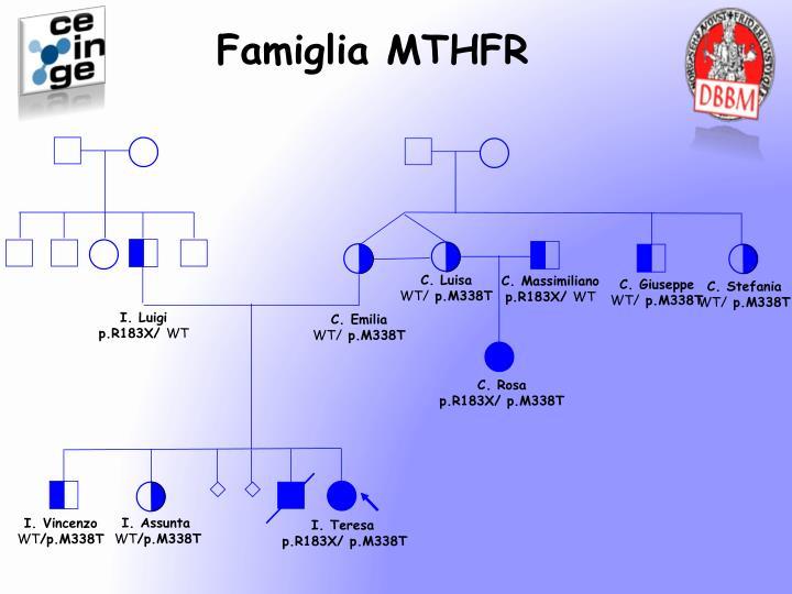 Famiglia MTHFR