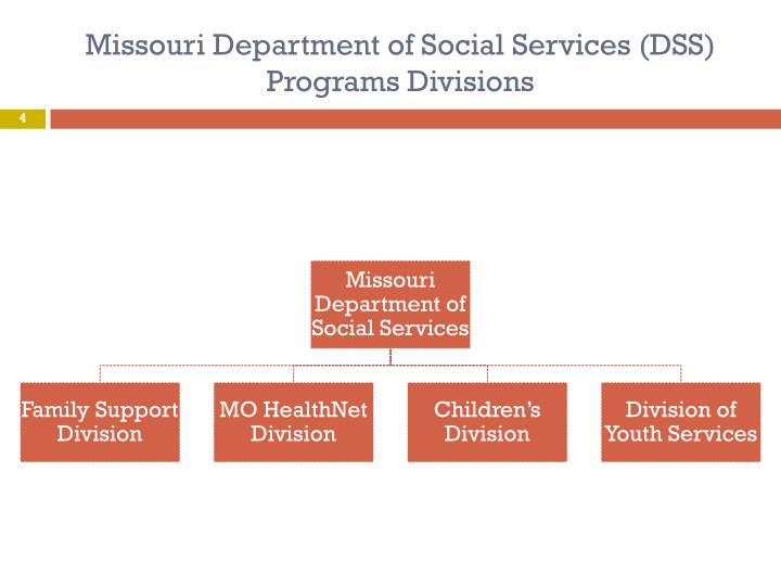 Missouri Department of Social Services (DSS)