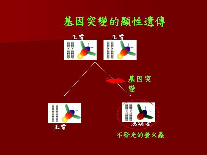基因突變的顯性遺傳