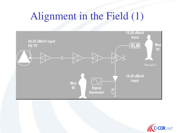 Alignment in the Field (1)
