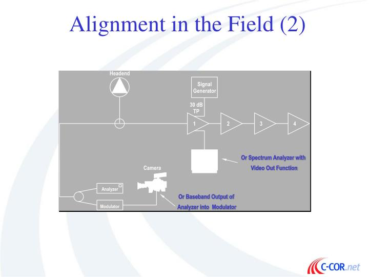 Alignment in the Field (2)
