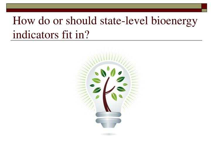 How do or should state-level bioenergy indicators fit in?