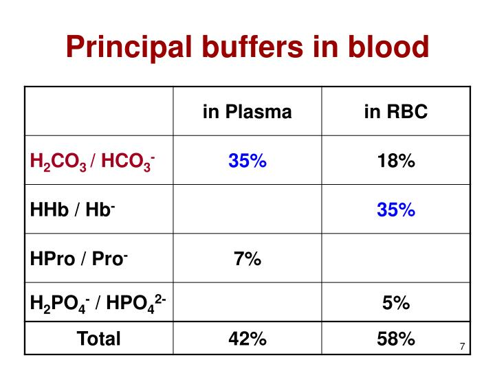 Principal buffers in blood