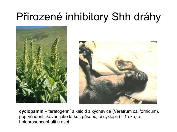 Pirozen inhibitory Shh drhy