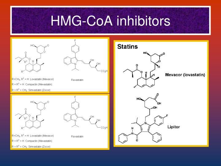 HMG-CoA inhibitors