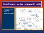 mevalonate active isoprenoid units