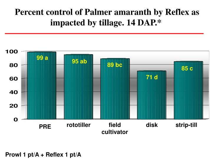 Percent control of Palmer amaranth by Reflex as impacted by tillage. 14 DAP.*
