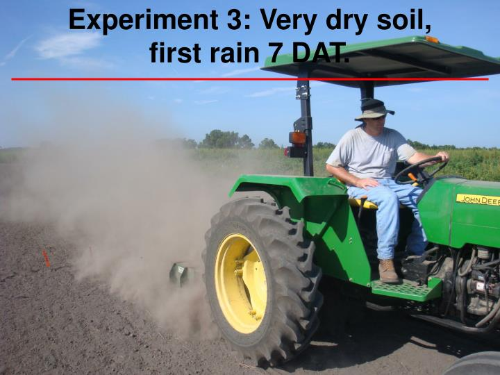 Experiment 3: Very dry soil, first rain 7 DAT.