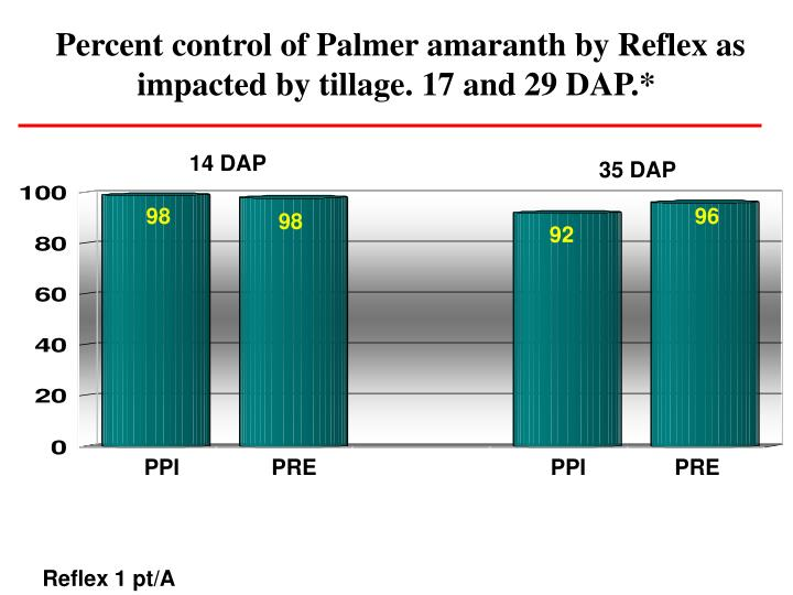 Percent control of Palmer amaranth by Reflex as impacted by tillage. 17 and 29 DAP.*