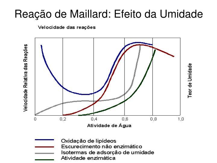 Reação de Maillard: Efeito da Umidade