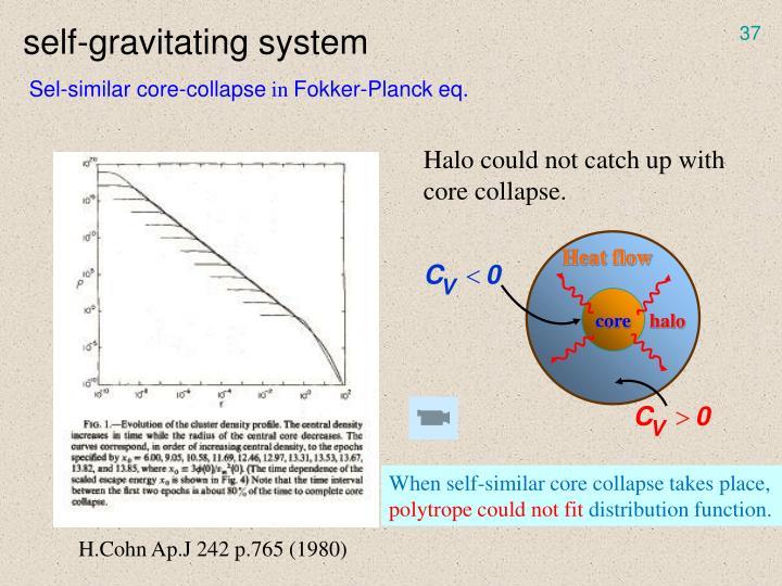self-gravitating system