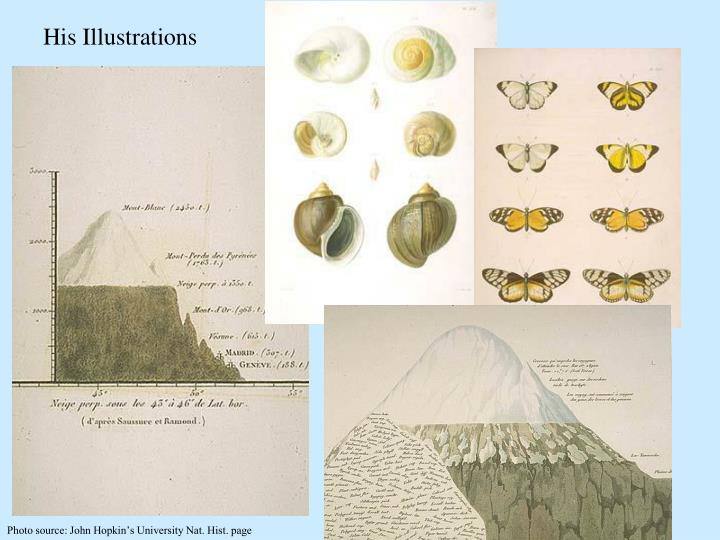 His Illustrations