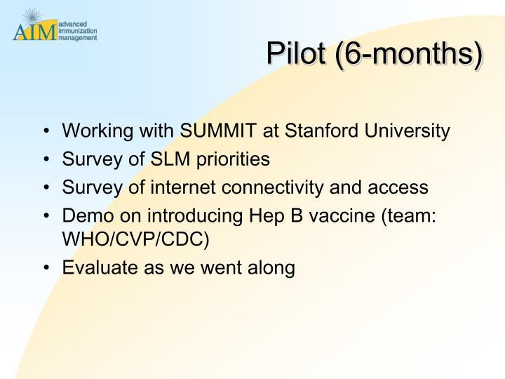 Pilot (6-months)