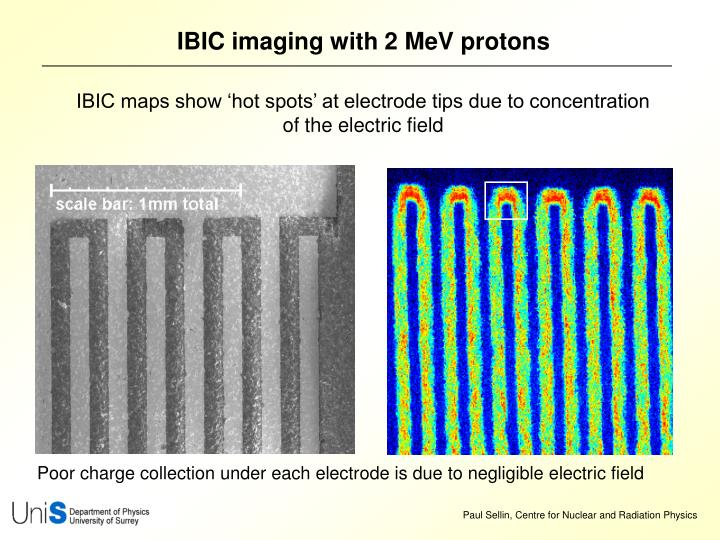 IBIC imaging with 2 MeV protons