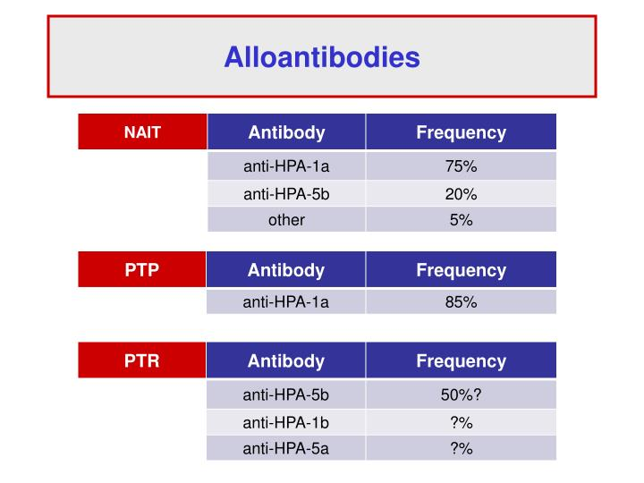 Alloantibodies