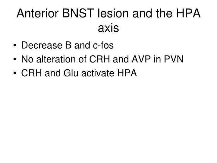 Anterior BNST lesion and the HPA axis