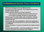 the multidivisional structure theory of the m form