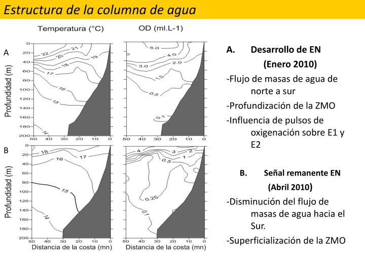 Estructura de la columna de agua