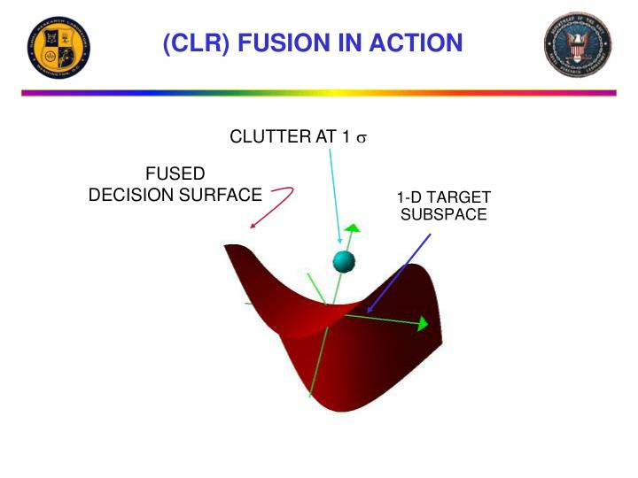 (CLR) FUSION IN ACTION