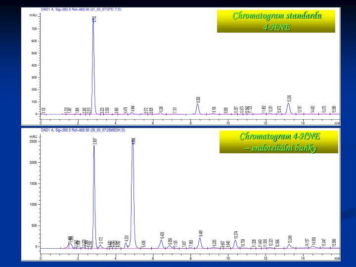 Chromatogram standardu
