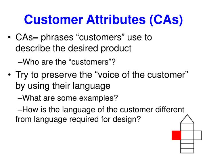 Customer Attributes (CAs)