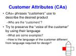 customer attributes cas