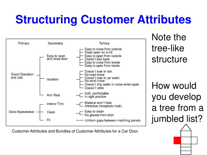 Structuring Customer Attributes