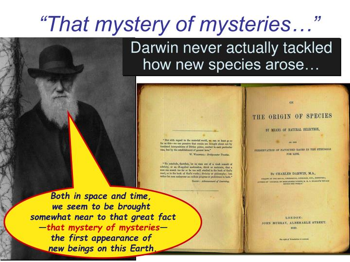 """That mystery of mysteries…"""