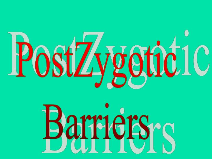 PostZygotic