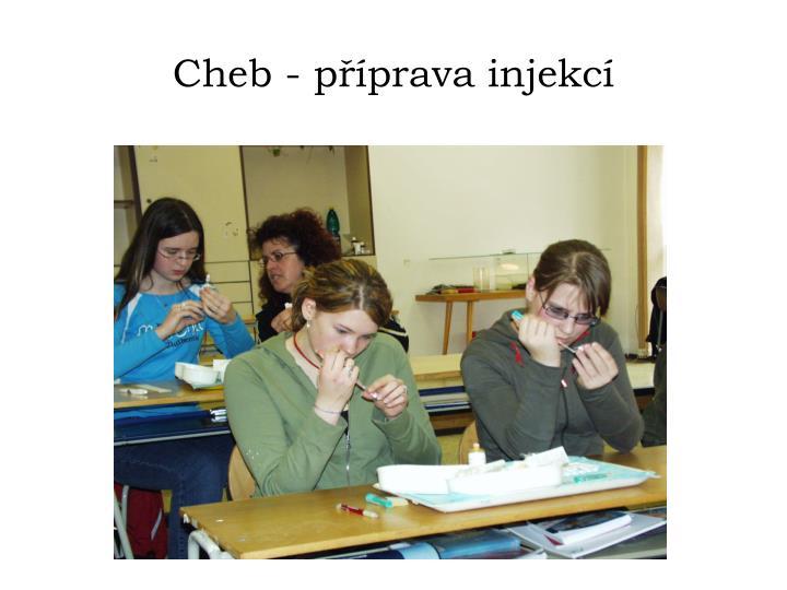 Cheb - příprava injekcí