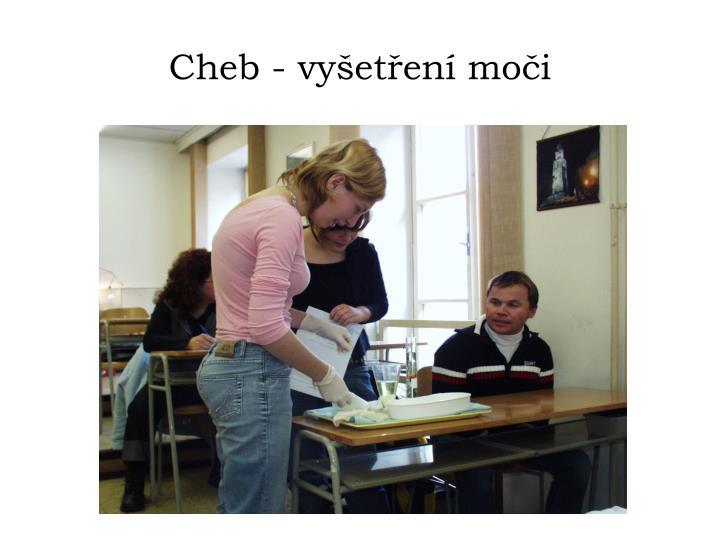 Cheb - vyšetření moči