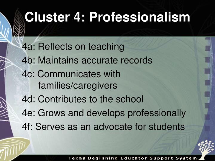 Cluster 4: Professionalism