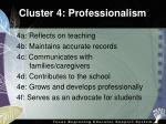 cluster 4 professionalism