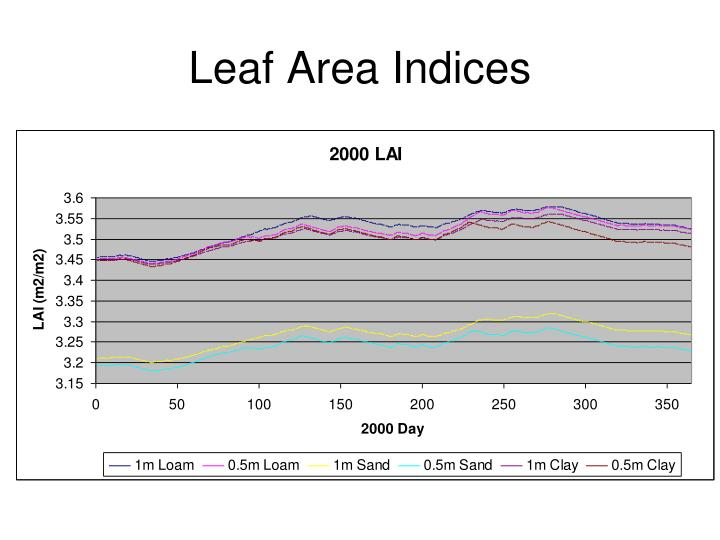 Leaf Area Indices