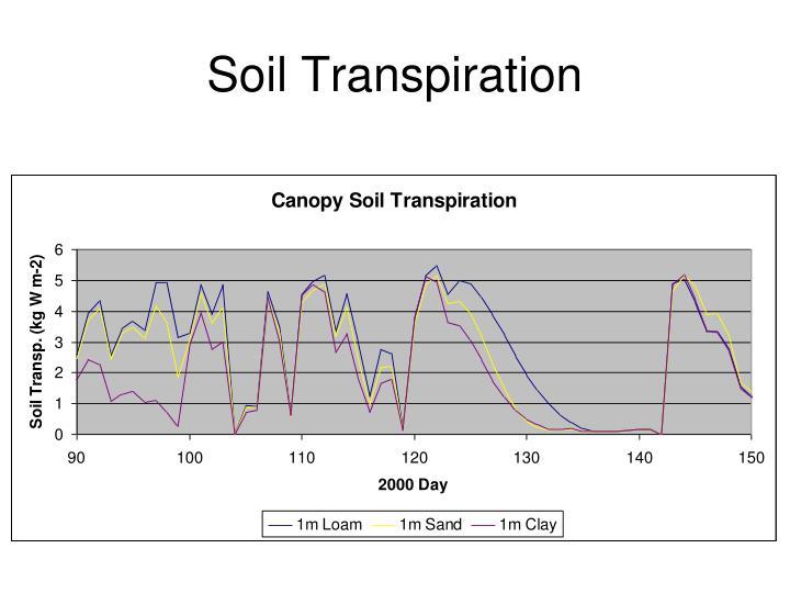 Soil Transpiration
