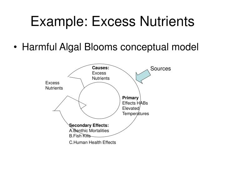 Example: Excess Nutrients