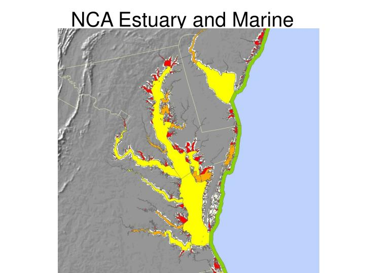 NCA Estuary and Marine