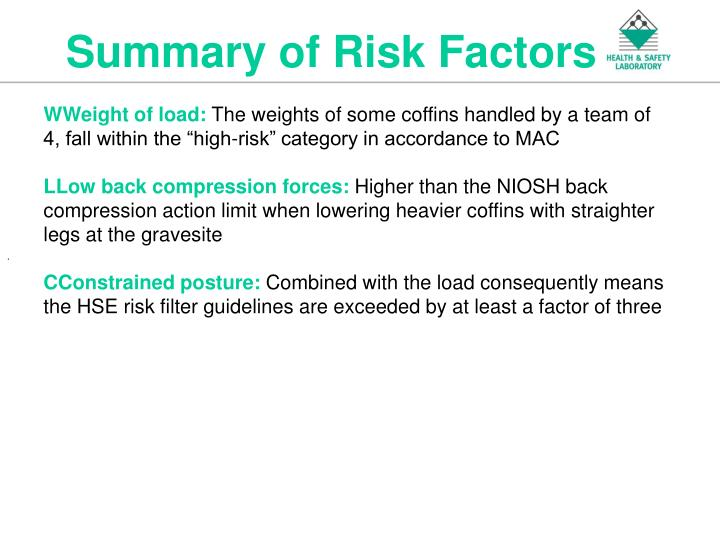 Summary of Risk Factors